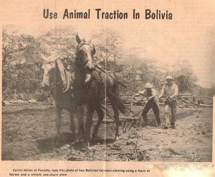 Animal Traction Cover.jpg